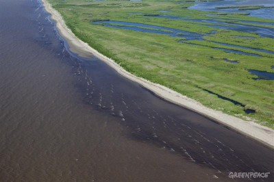 Deepwater Horizon - нефтяное пятно на побережье